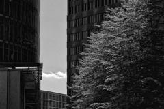 Berlijn_Sony02zwW