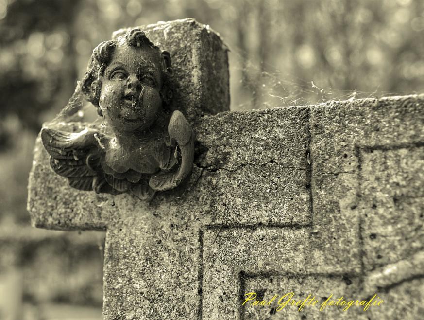 kerkhof07dtw