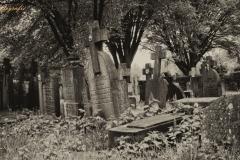 kerkhof37w